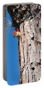 The Woodpecker Is In Portable Battery Charger