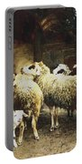 The Young Shepherd Portable Battery Charger