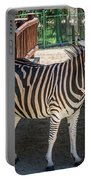 The Zebra Portable Battery Charger