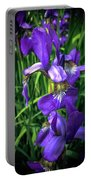 Colors Of Iris Portable Battery Charger