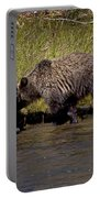 Thirsty Grizzlies  #3418 Portable Battery Charger
