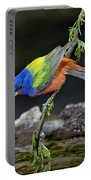 Thirsty Painted Bunting Portable Battery Charger