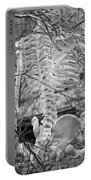 This Is Your Spinal Notice Portable Battery Charger