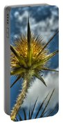 Thistle And Sky Portable Battery Charger