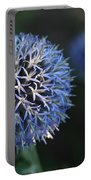 Thistle Bloom 2 Portable Battery Charger