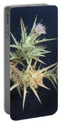 Thistle Of Israel Portable Battery Charger