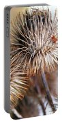 Thistle Seedheads Portable Battery Charger