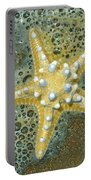 Thorny Starfish Portable Battery Charger