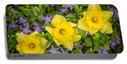 Three Daffodils In Blooming Periwinkle Portable Battery Charger