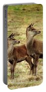 Wildlife Three Red Deer Portable Battery Charger
