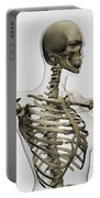 Three Dimensional View Of Female Rib Portable Battery Charger by Stocktrek Images