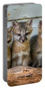 Three Fox Kits Portable Battery Charger by Paul Freidlund