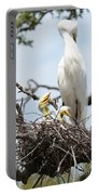 Three Great Egret Chicks In Nest Portable Battery Charger by Carol Groenen