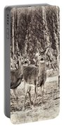 Three In The Field Portable Battery Charger