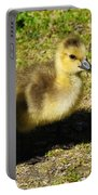 Three Little Goslings Portable Battery Charger