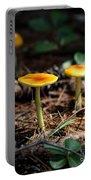 Three Orange Mushrooms Portable Battery Charger