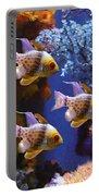 Three Pajama Cardinal Fish Portable Battery Charger