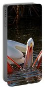 Three Pelicans And A Fish Portable Battery Charger