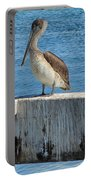 Three Pelicans Portable Battery Charger