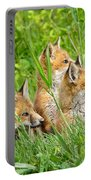 Three Red Fox Pups Portable Battery Charger