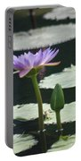 Three Stages Of Blue Bloom Portable Battery Charger