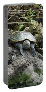 Three Turtles Portable Battery Charger