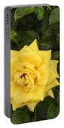 Three Yellow Roses In Rain Portable Battery Charger