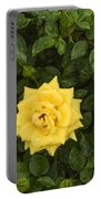 Three Yellow Roses Portable Battery Charger