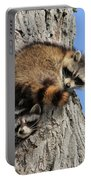 Three Young Raccoons Portable Battery Charger