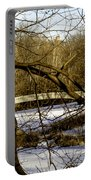 Through The Branches 2 - Central Park - Nyc Portable Battery Charger