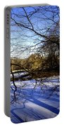 Through The Branches 4 - Central Park - Nyc Portable Battery Charger