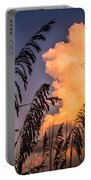 Through The Grass Portable Battery Charger