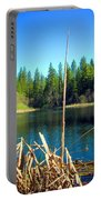 Through The Reeds At Grace Lake Portable Battery Charger