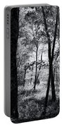 Through The Trees In Black And White Portable Battery Charger