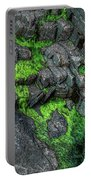 Thunder Hole Algae Portable Battery Charger