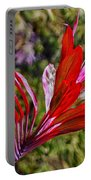 Red Ti Plant Portable Battery Charger