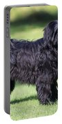 Tibetan Terrier Dog Standing Portable Battery Charger