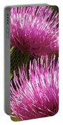 Tickled Thistle Portable Battery Charger
