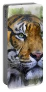 Tiger 26 Portable Battery Charger