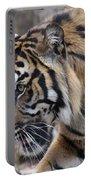 Sumatran Tiger-5418 Portable Battery Charger
