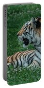Tiger At Rest 4 Portable Battery Charger