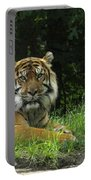 Tiger At Rest Portable Battery Charger
