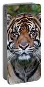 Tiger Stripes Portable Battery Charger