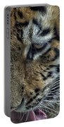 Tiger Drinking Portable Battery Charger
