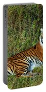Tiger In The Grass Portable Battery Charger