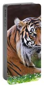 Tiger In The Sun Painting Portable Battery Charger