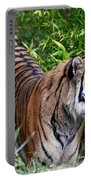 Tiger In The Vast Jungles Portable Battery Charger