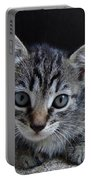 Tiger Kitten Portable Battery Charger