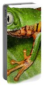 Tiger-legged Monkey Frog Portable Battery Charger