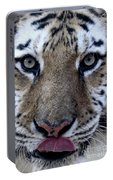 Tiger Lick Portable Battery Charger